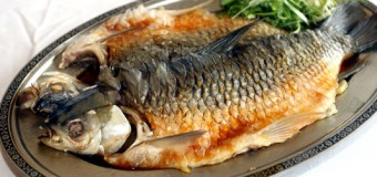 Best 5 Protein Enriched Fishes