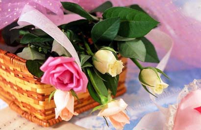 Valentine-Day-5526