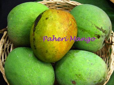 Paheri Mango