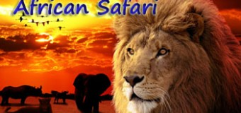 Guidelines For Planning A Perfect African Safari Vacation