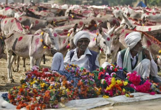 Vautha Mela, Gujarat