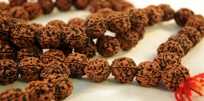 Getting Familiar With Different Types Of Powerful And Sacred Rudraksha Bead