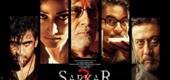 Sarkar 3 – Movie Review